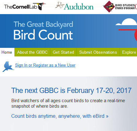 Backyard Birdcount Website