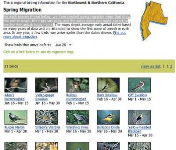 Spring Migration for 31 birds
